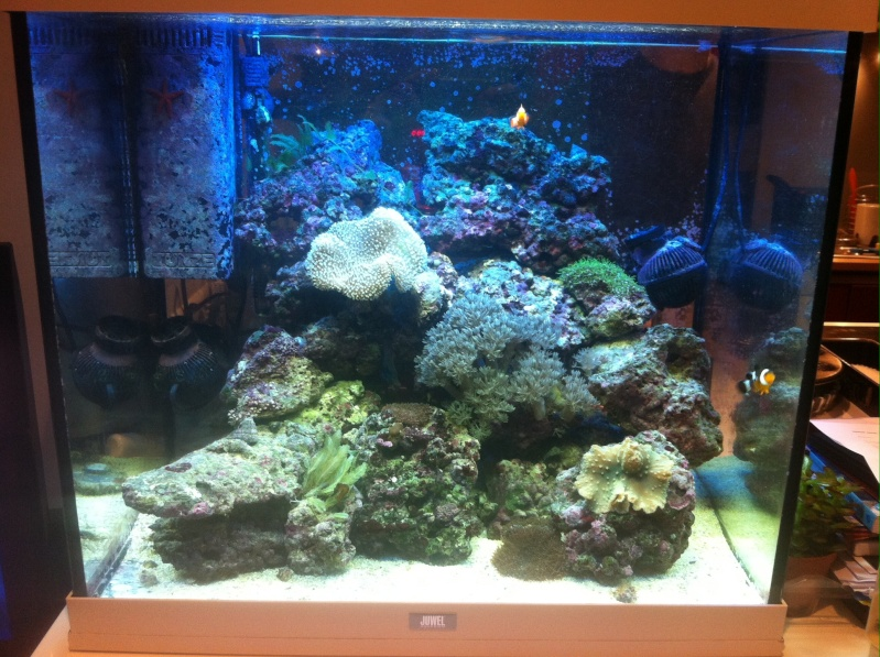 Mon Lido120 eau de mer Image11