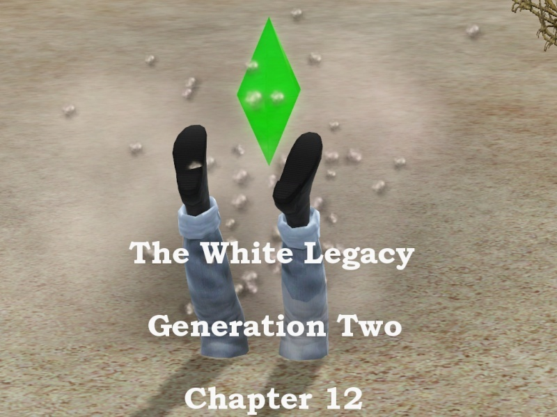 The White Legacy 100 Girls Challenge Title_12