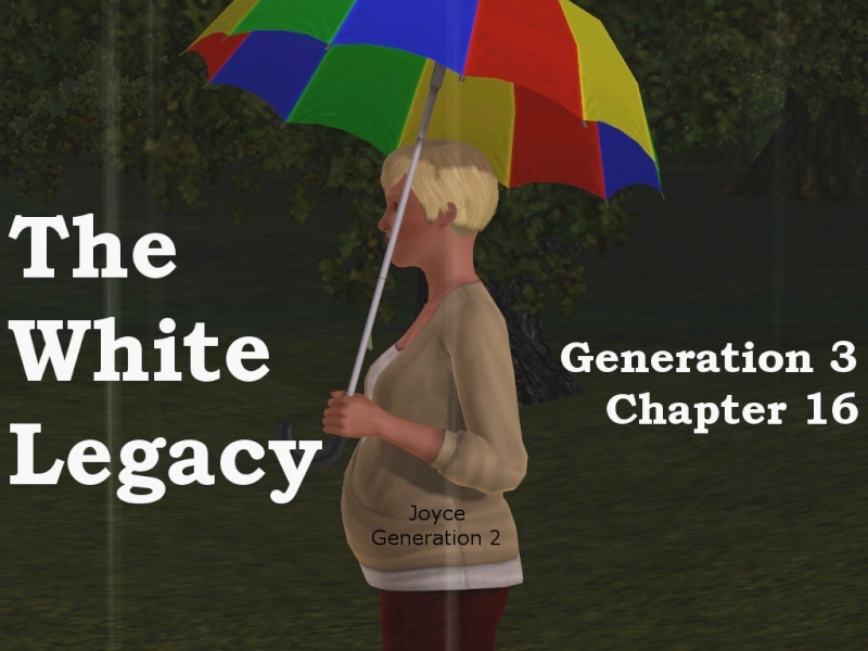 The White Legacy 100 Girls Challenge Titlec11