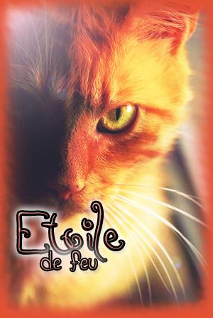 ~¤*Ma galerie*¤~ Etoile10