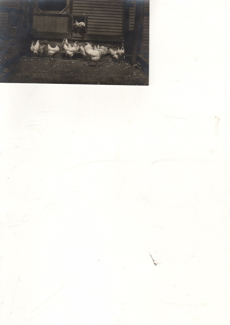 Photos du père Wilfred, Chantecler Trappe d'oka, Début 1900. Chante10