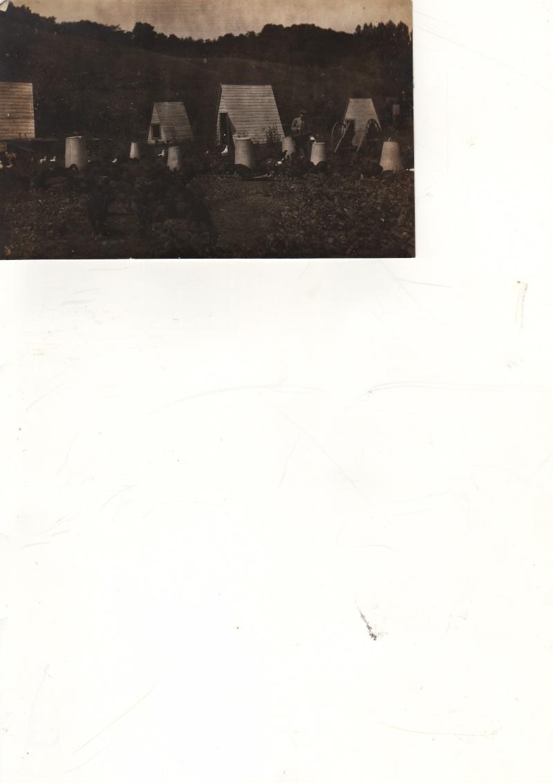 Trappe oka début 1900. Archives Société d'histoire d'Oka. Poules10