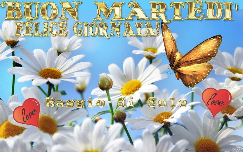 MARTEDI 20 MAGGIO SALUTIAMOCI IN QUESTA SEZIONE 276_3710
