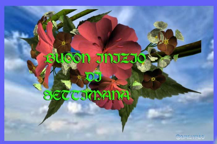 LUNEDI 5 MAGGIO SALUTIAMOCI IN QUESTA SEZIONE 325_sq10