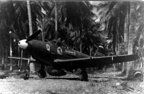 P39 D airacobra 1/32 Port_m10