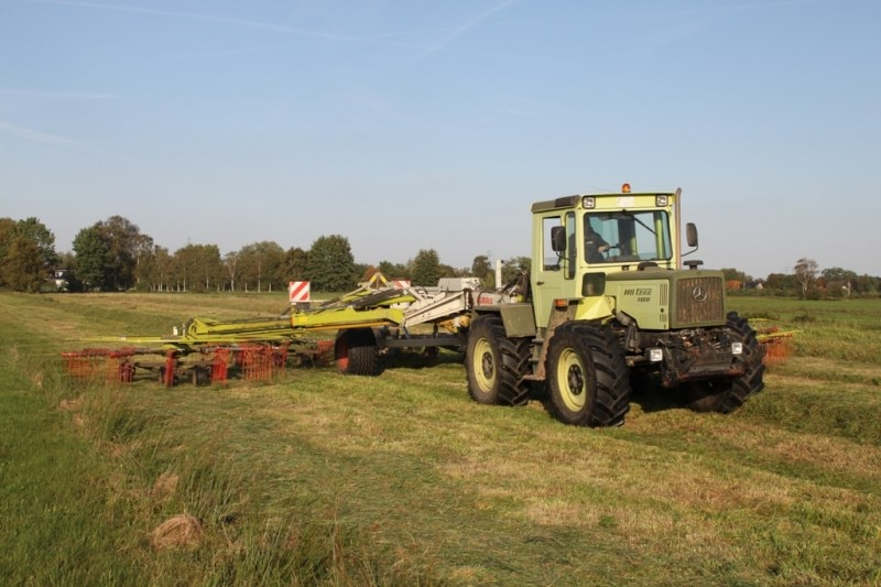 Unimog et MB Trac pour une utilisation agricole dans le monde  - Page 4 Mb_tra14