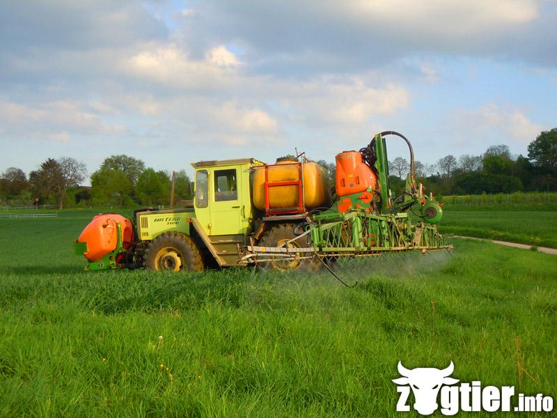 Unimog et MB Trac pour une utilisation agricole dans le monde  - Page 4 Mb_tra15