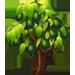 Vous cherchez un arbre ? Venez cliquer ici !!! Avocad13