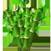 Vous cherchez un arbre ? Venez cliquer ici !!! Giantb11
