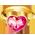 Licorne dentelle => Coeur Rose Pinkhe11