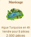 Marécage => Algue Turquoise (Récoltable) Sans1203