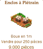 pietrain - Enclos à Piétrain / Famille de Cochons Piétrain => Boue Sans_427