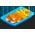 L'étang à poissons [Dans le jardin fermier et aquatique] Sardin10