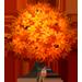 Vous cherchez un arbre ? Venez cliquer ici !!! Sugarm11