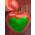 Arbre de gratitude => Fruit de Gratitude Thankf14