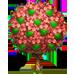 Vous cherchez un arbre ? Venez cliquer ici !!! Thankf15