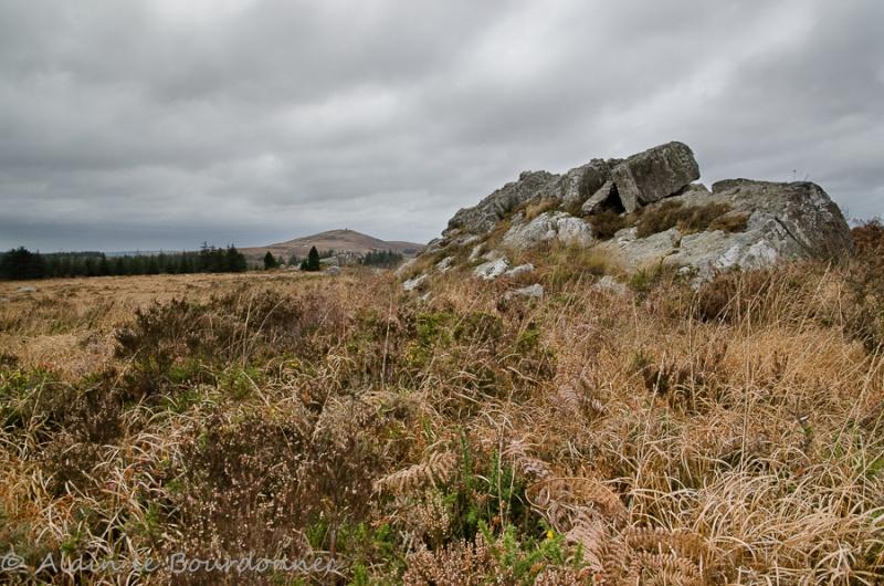 Nous avons même la montagne en Bretagne .... Dsc_0710