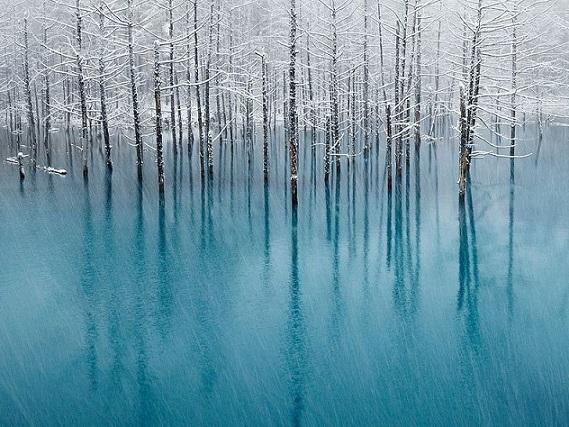L'étang bleu d'Hokkaido Blue-p11