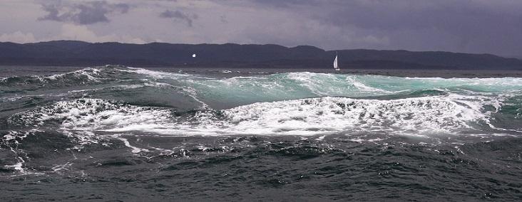 Maelstroms et courants de marée Img_4910