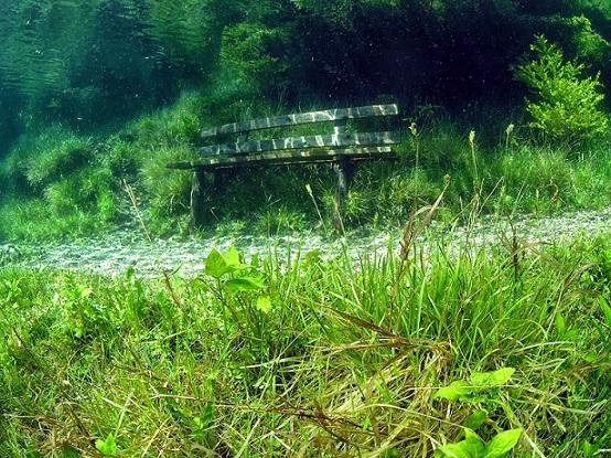 Le lac vert Le-lac10