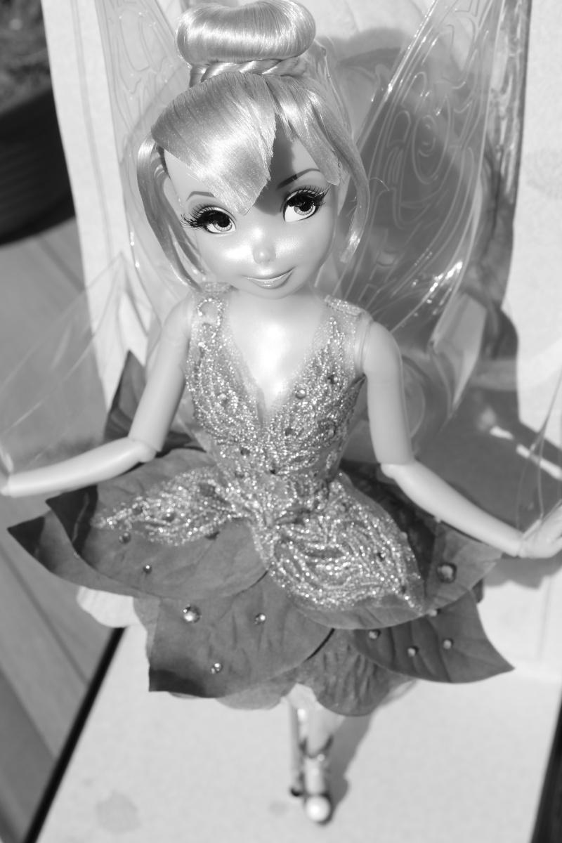 Disney Fairies Designer Collection (depuis 2014) - Page 22 Img_1410