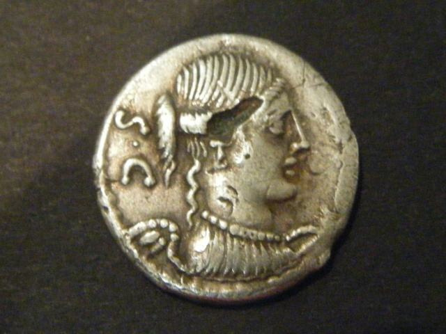 CONSIDIA (46 avant J.-C.) Caius Considius Denier 46 AC. Dscf4910