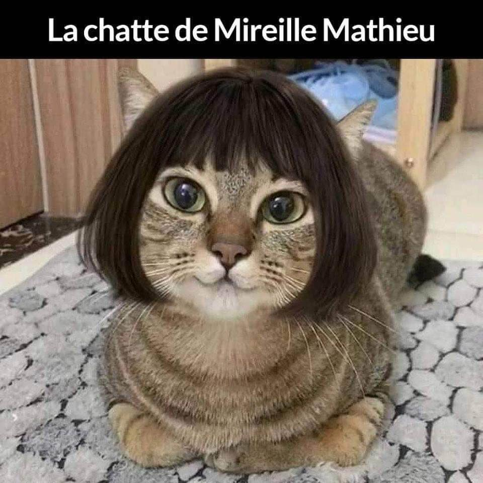 humour - Page 11 12330010