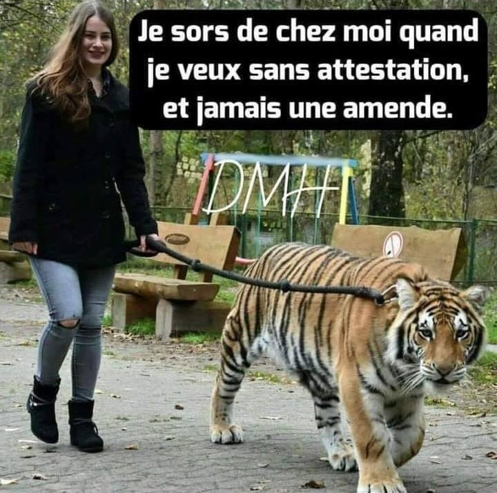 humour - Page 15 12640310