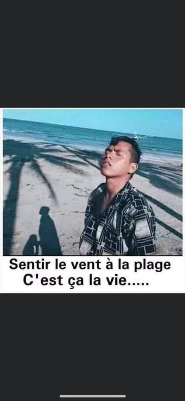 humour - Page 21 13168210
