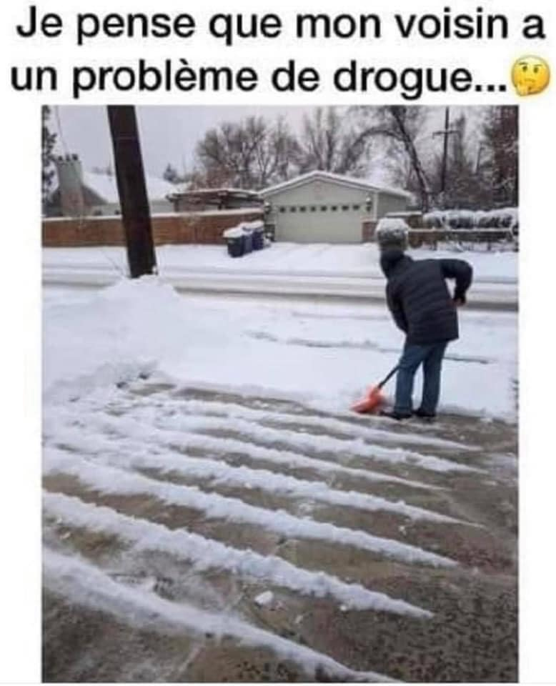 humour - Page 23 13638410