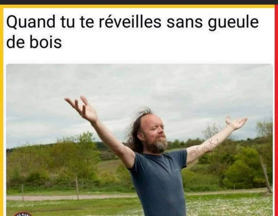 humour - Page 23 13642310