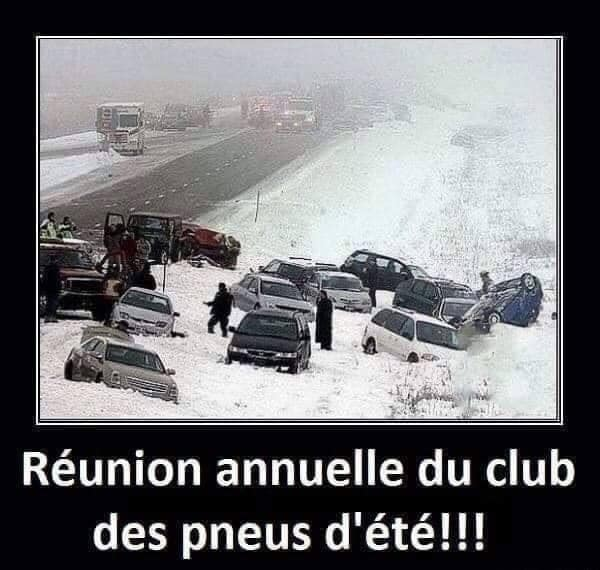 humour - Page 23 13727610