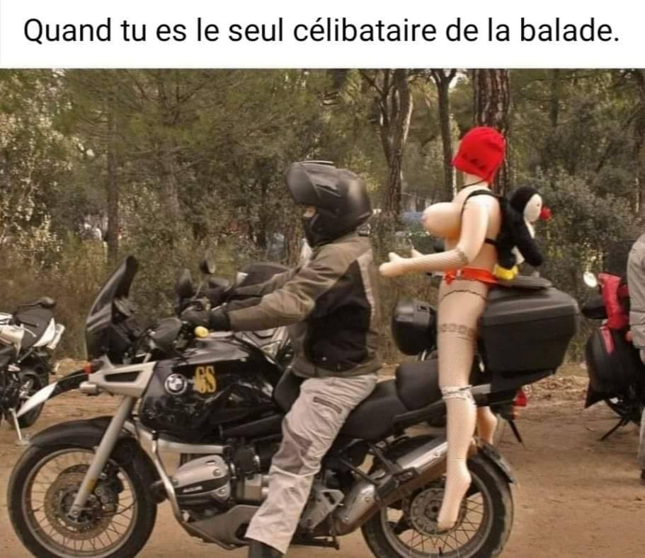 humour - Page 25 14325610
