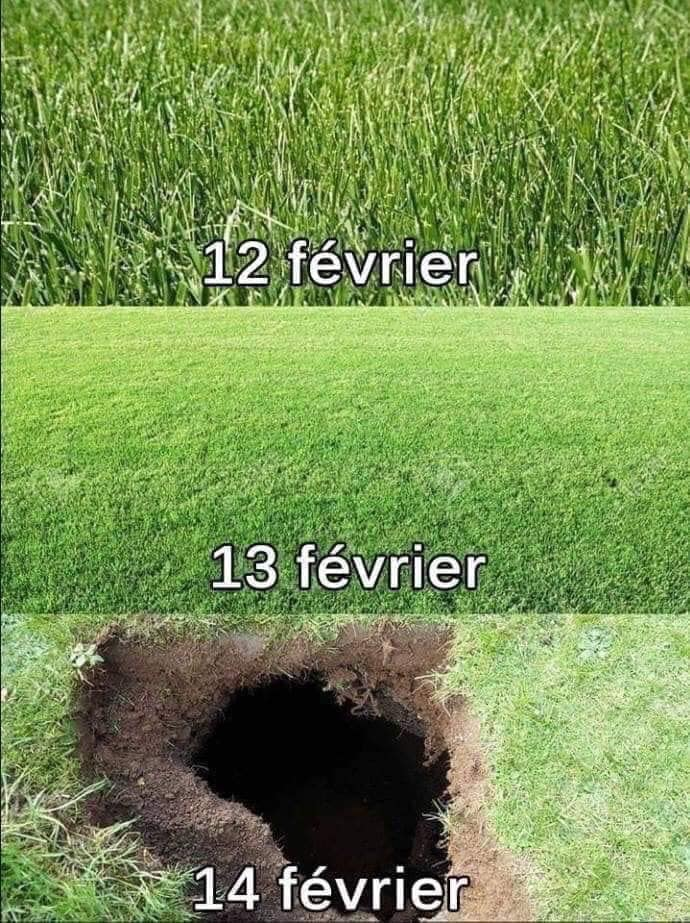 humour - Page 26 14899810