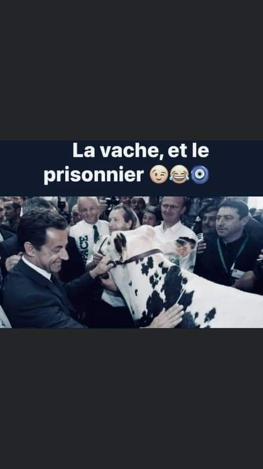 humour - Page 4 15784910