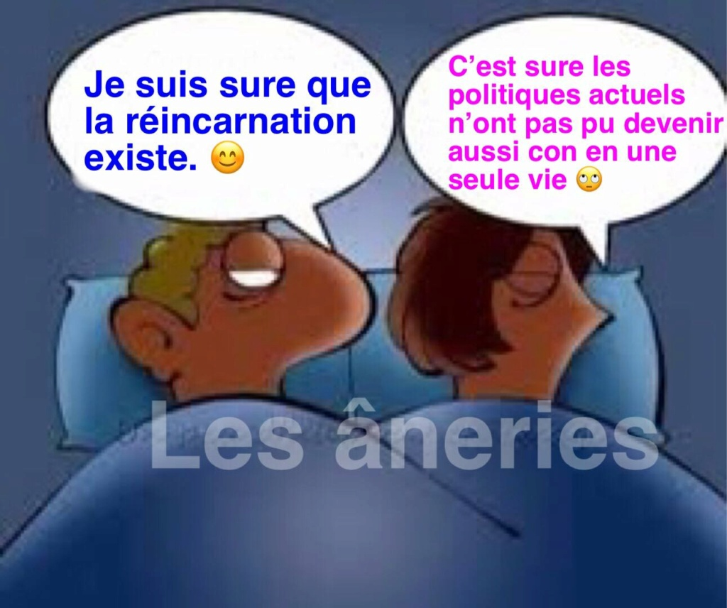 humour - Page 34 16789310