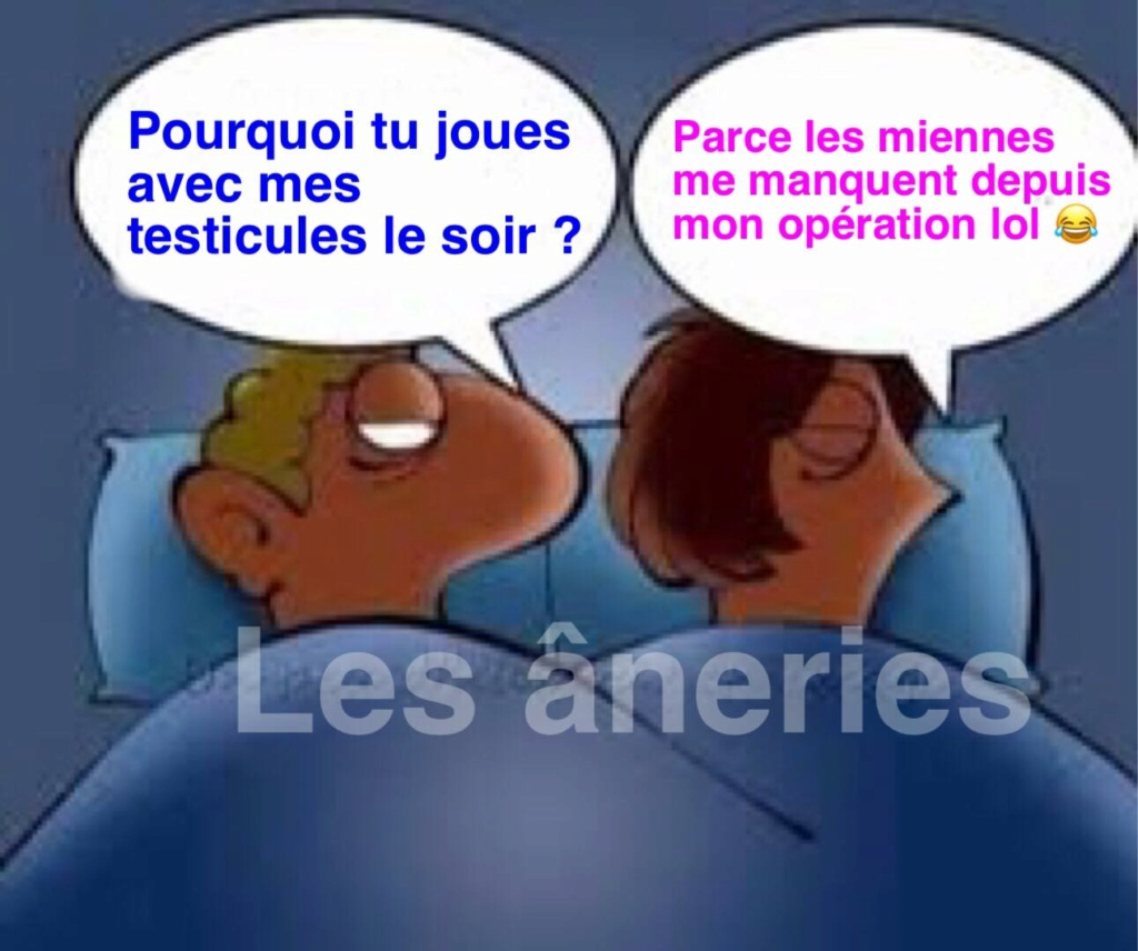 humour - Page 34 16891510