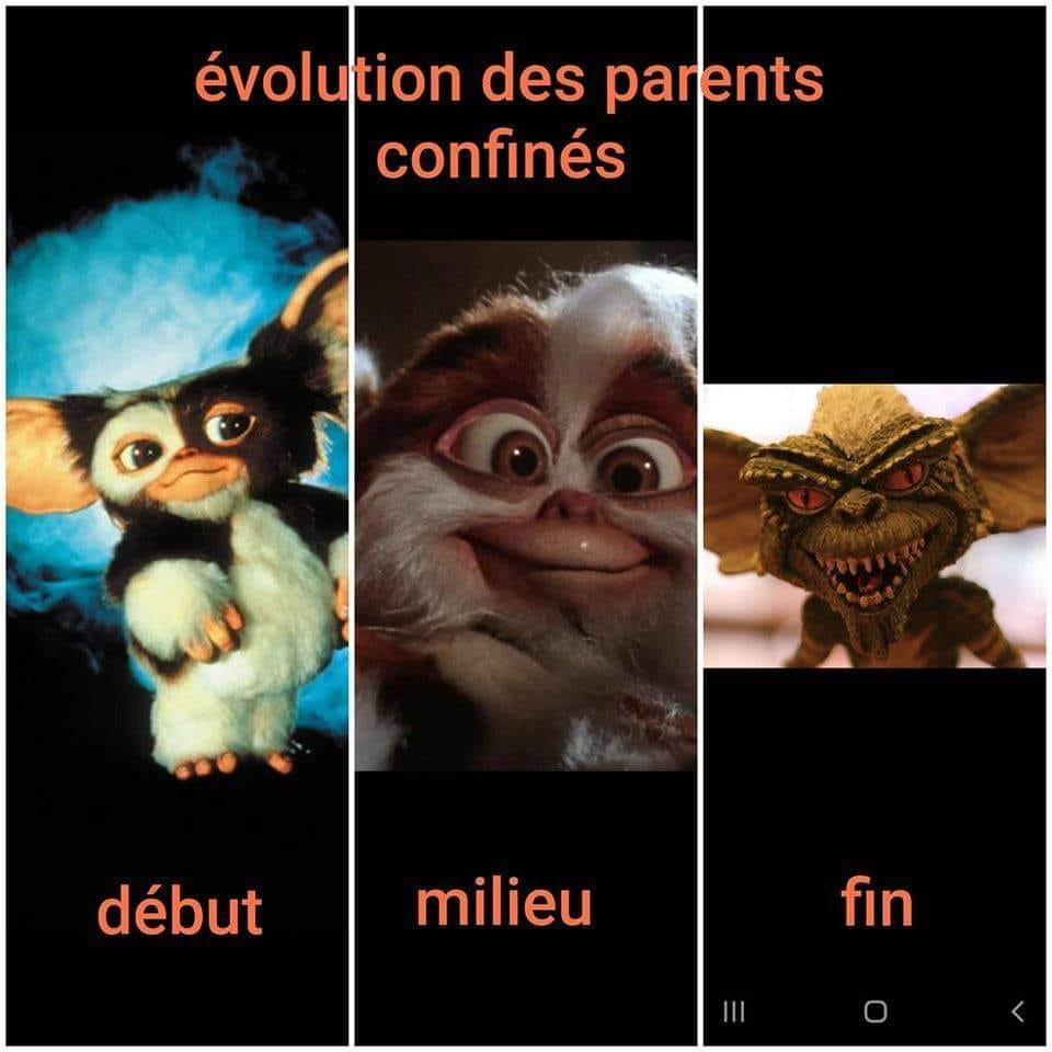humour - Page 34 16958210