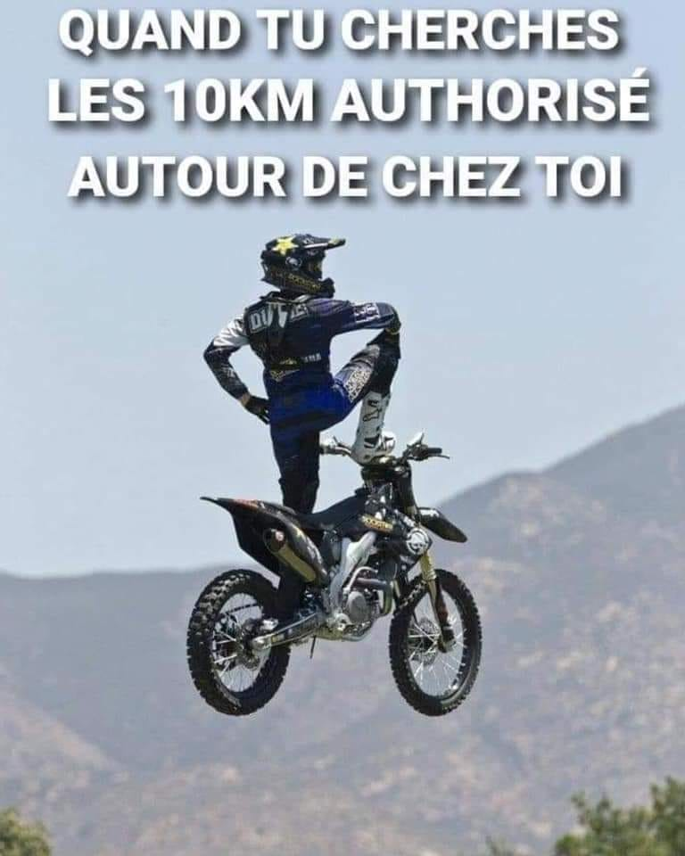 humour - Page 37 17337010