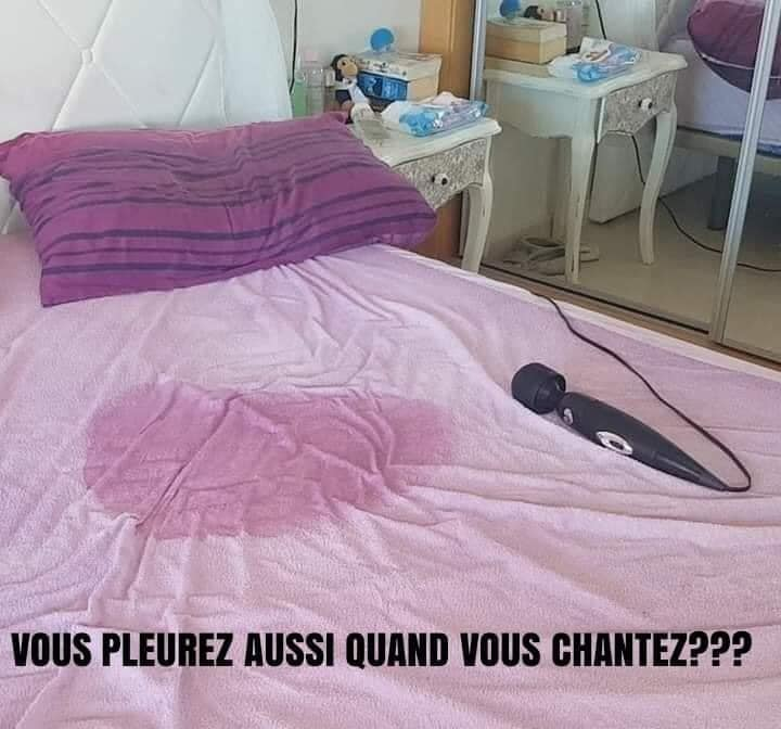 humour - Page 36 17367210