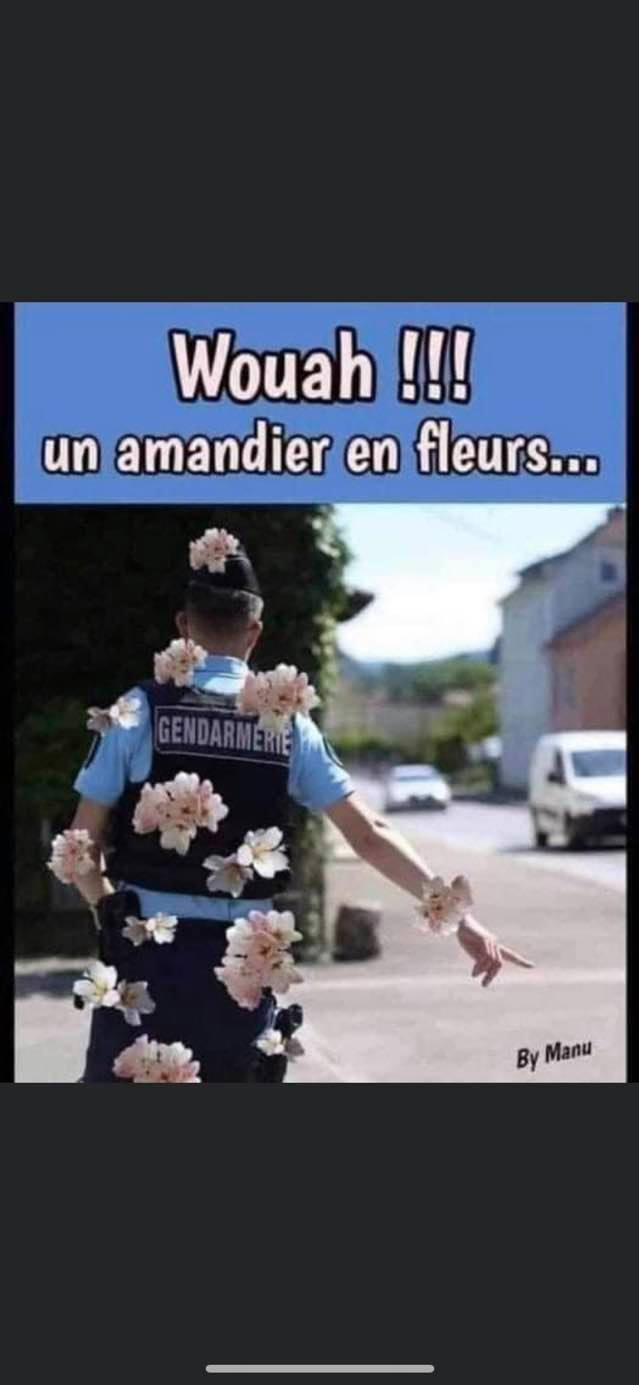 humour - Page 36 17453610