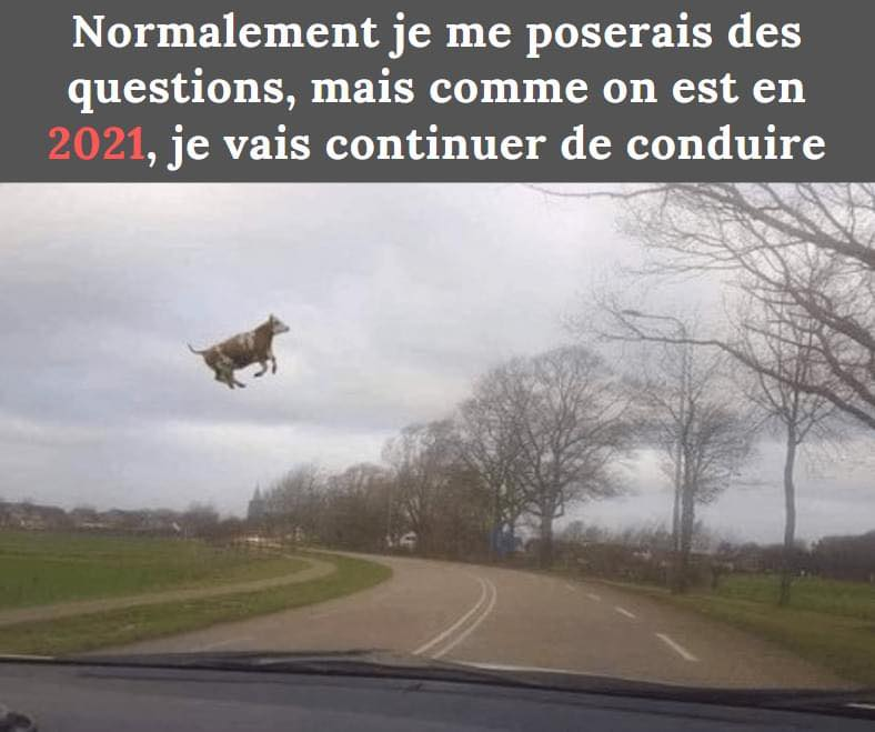 humour - Page 37 17588910