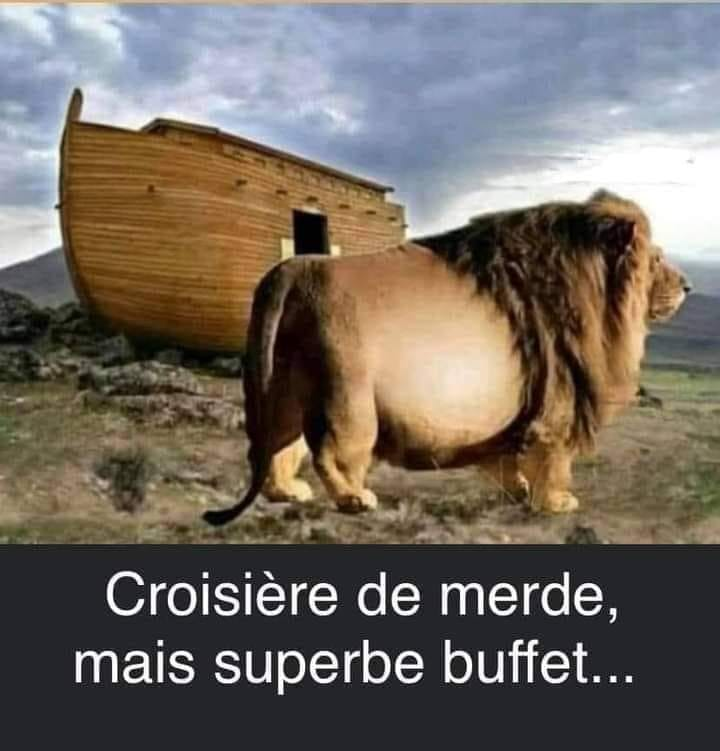 humour - Page 2 19887310