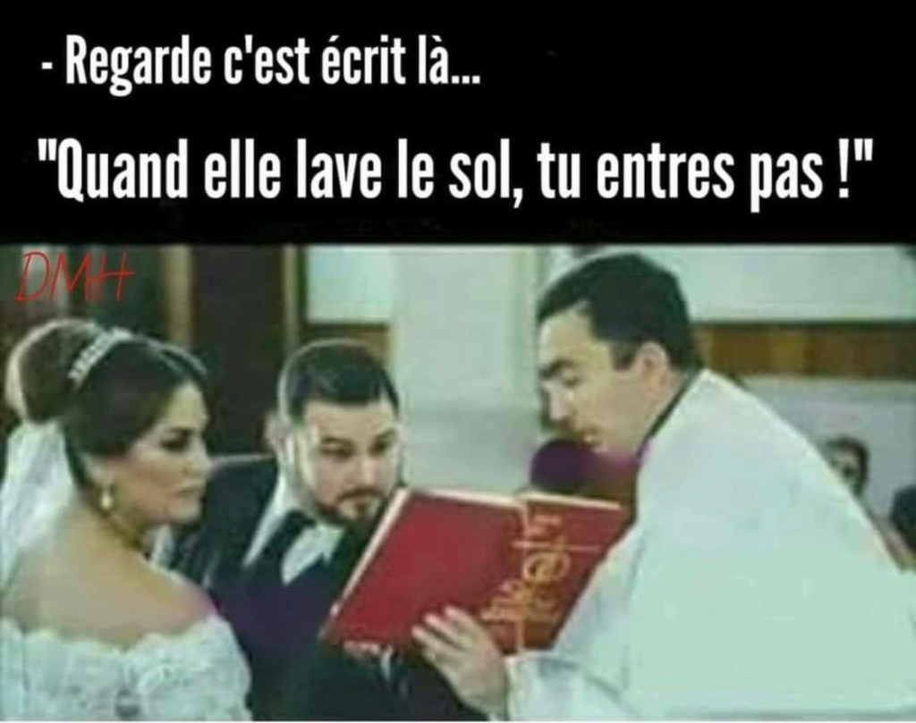 humour - Page 3 20287510