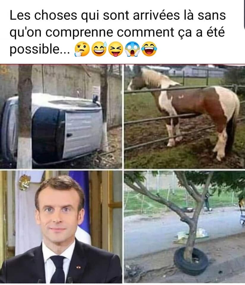 humour - Page 4 20666710