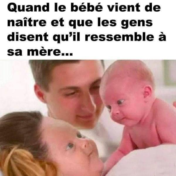 humour - Page 5 21030410
