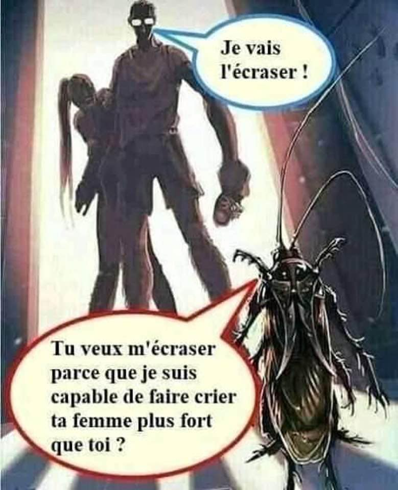 humour - Page 6 22059410