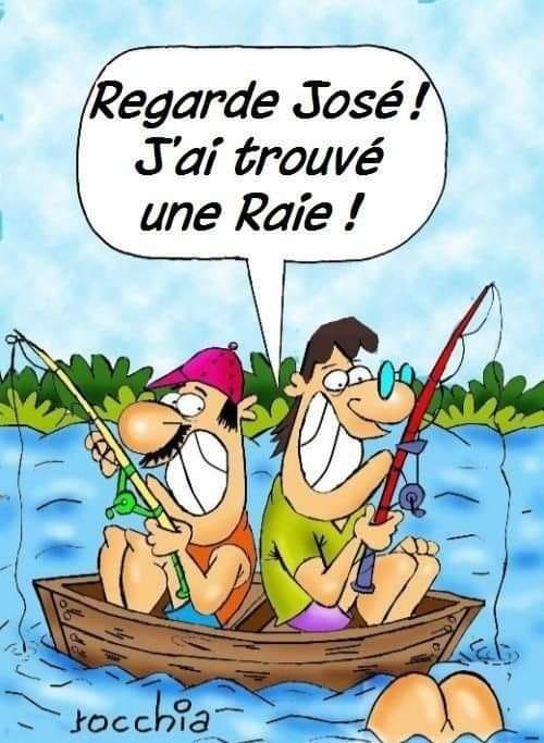 humour - Page 9 24013610