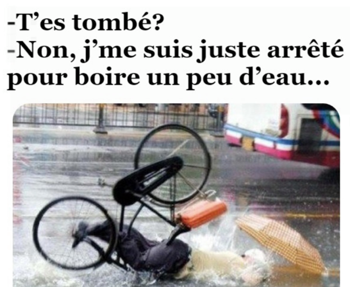 humour - Page 9 24166810