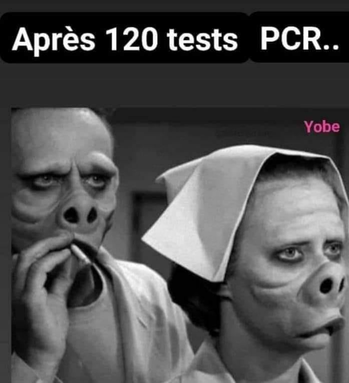 humour - Page 10 24223210